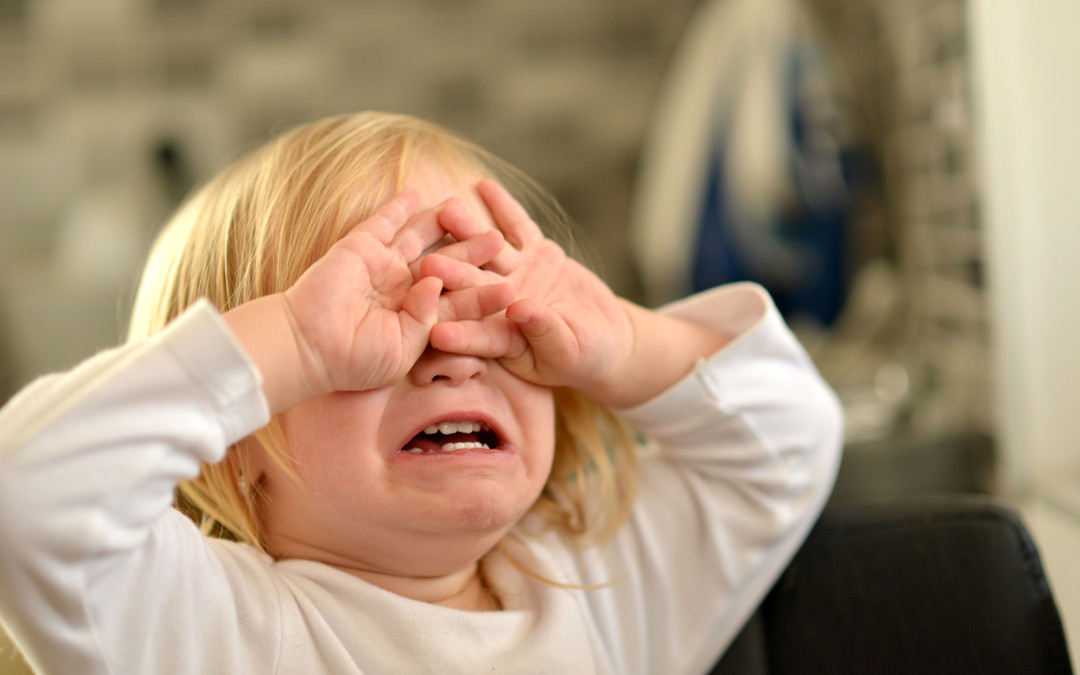 Triple P One Session: Toddlers and Tantrums